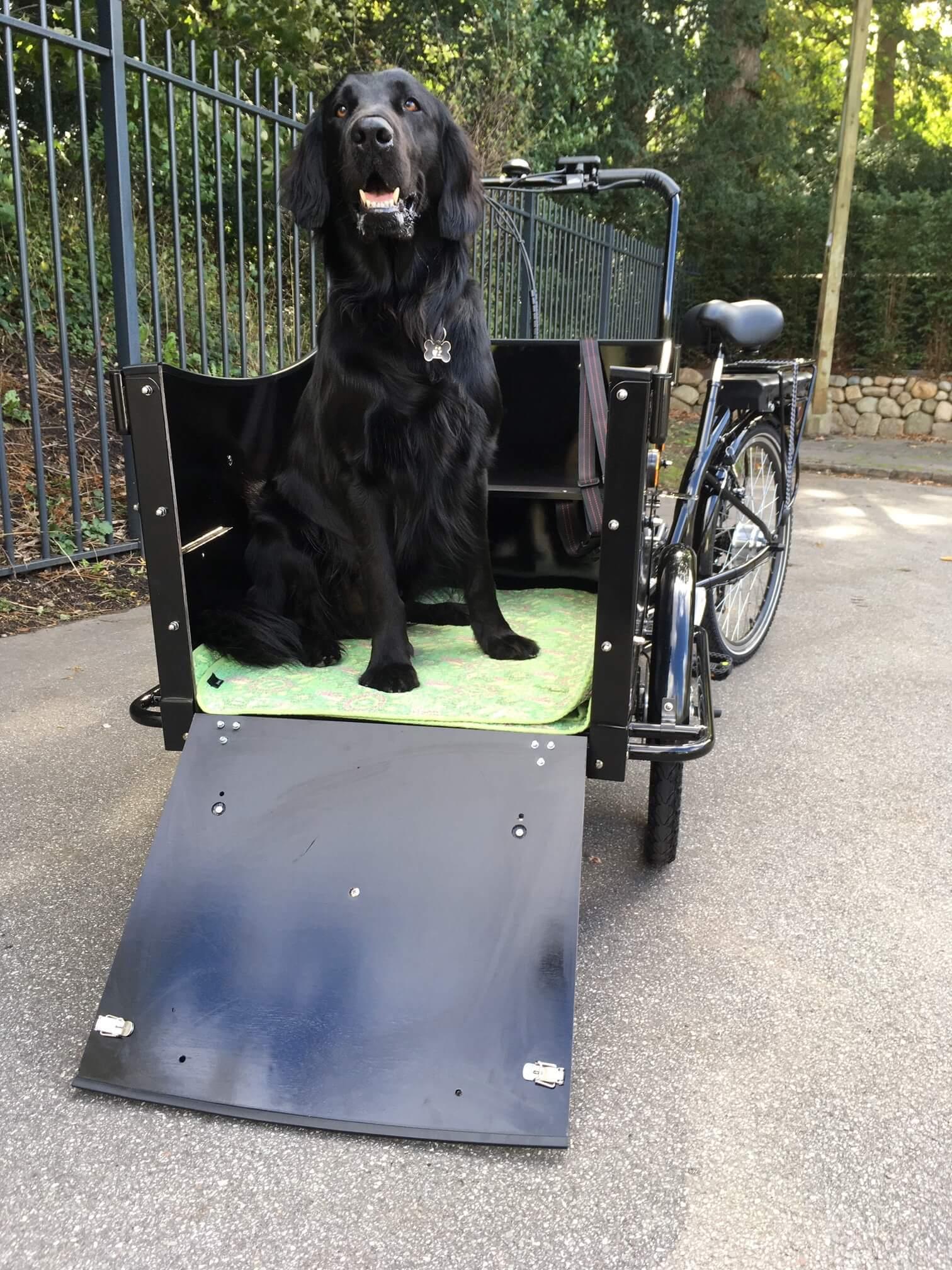 El ladcykel til hund